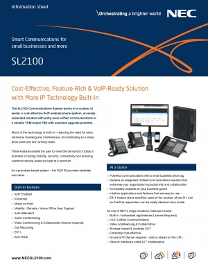 NEW NEC SL2100 IP PBX